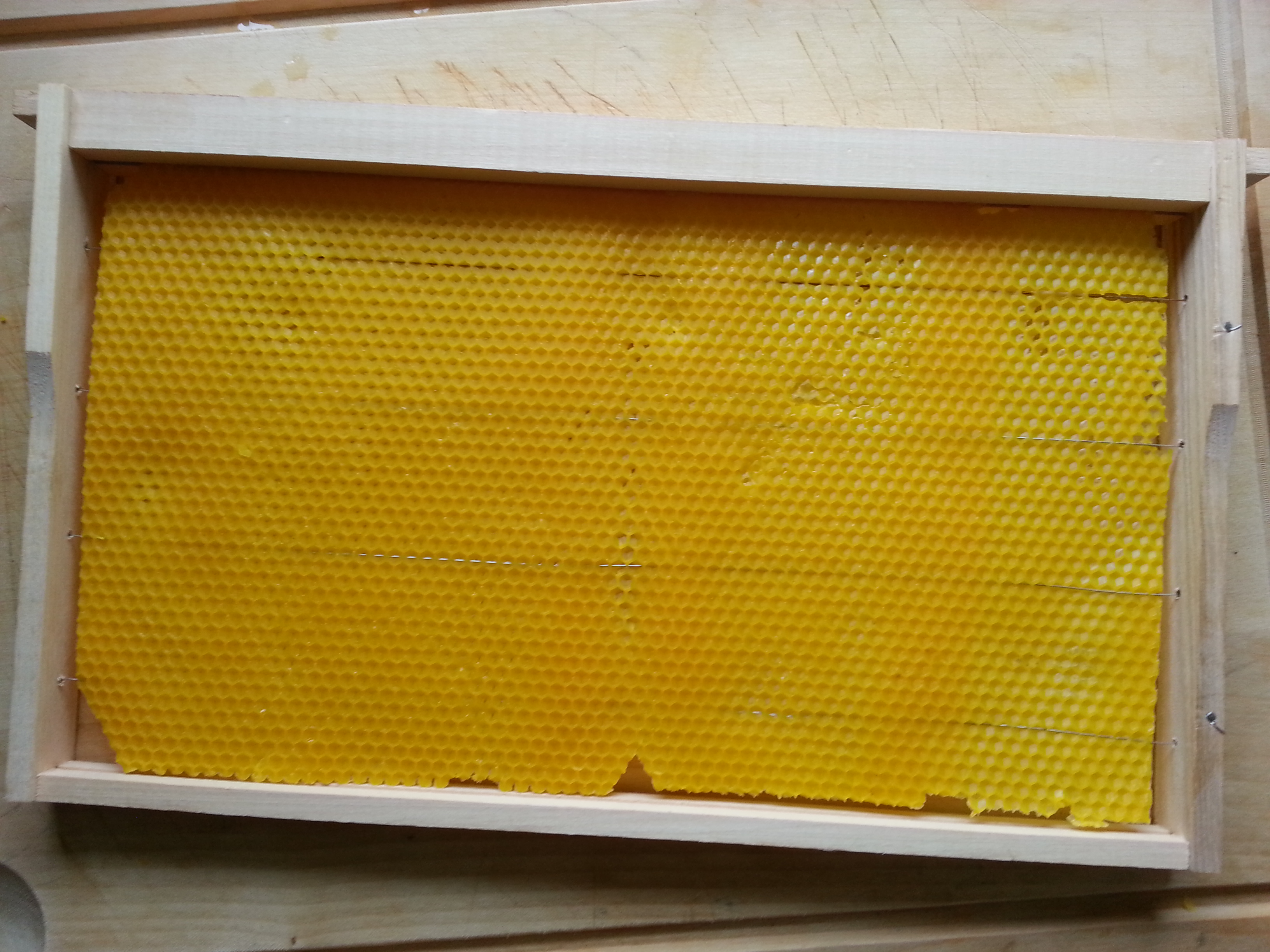 modifizierte Hoffmannrähmchen mit selbstgegossenen Mittelwänden